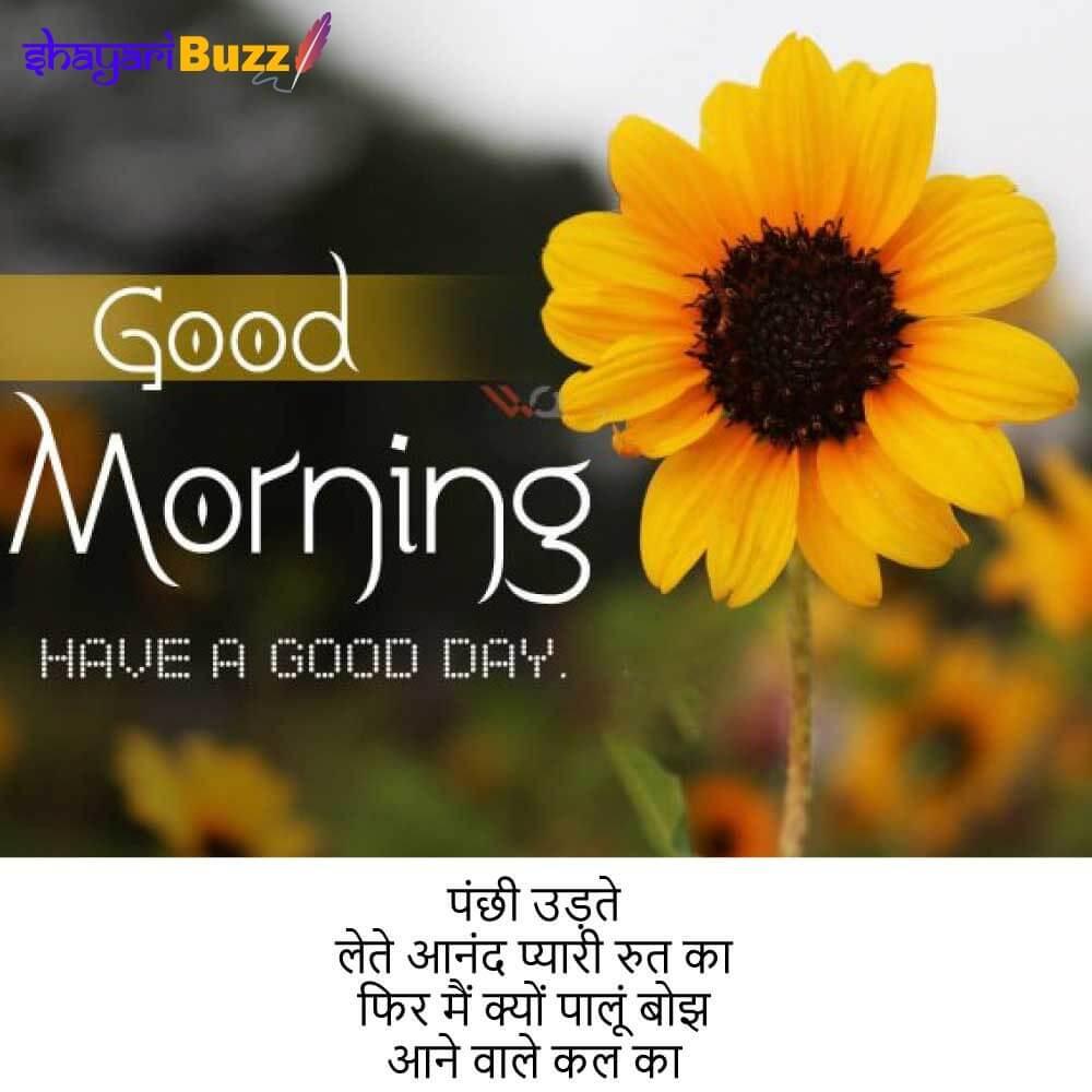 good morning shayari in hindi good morning shayari hindi good morning shayari photo गुड मॉर्निंग शायरी गुड मॉर्निंग शायरी फोटो गुड मॉर्निंग शायरी अच्छी गुड मॉर्निंग शायरी अप्प्स